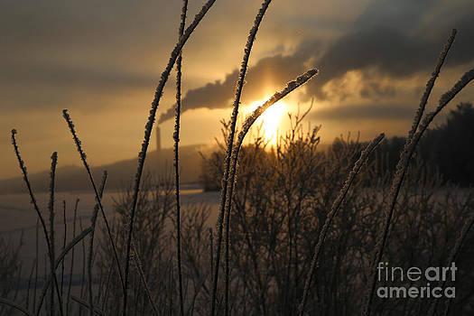 Sunset on a frosty day by Markus Hovikoski