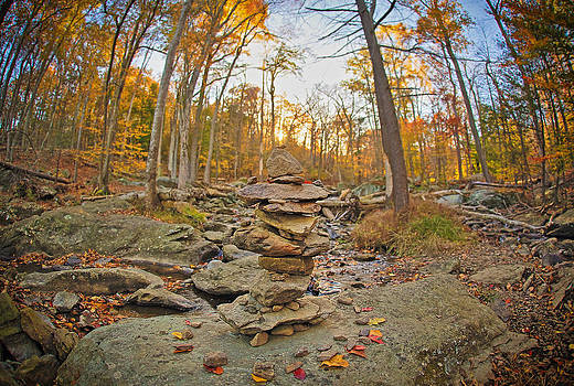 Sunset On Catoctin Mountain by SCB Captures