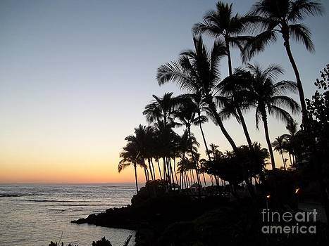 Sunset on Hawai'i by Michael Madlem
