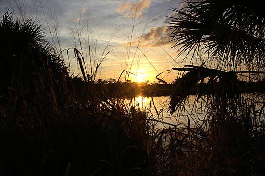 Suzie Banks - Sunset on Pine Island