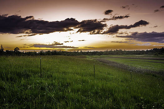 Sunset on Roy Rogers Rd by Jean-Jacques Thebault