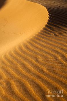 Fototrav Print - Sunset on sand dunes in Dubai