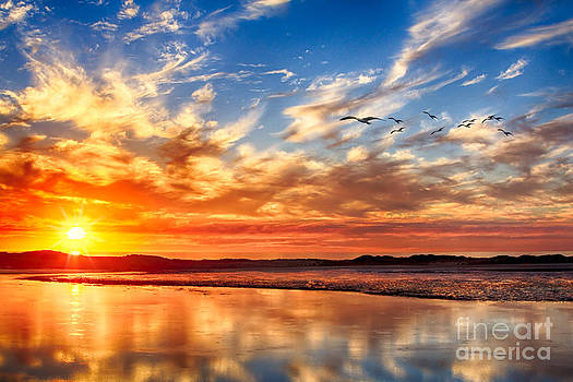 Sunset on the Bay by Beth Sargent