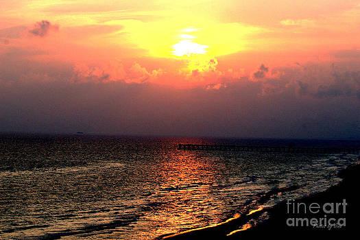 Sunset on the Beach by Jinx Farmer
