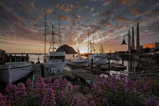 Sunset On The Docks by Kevin L Cole