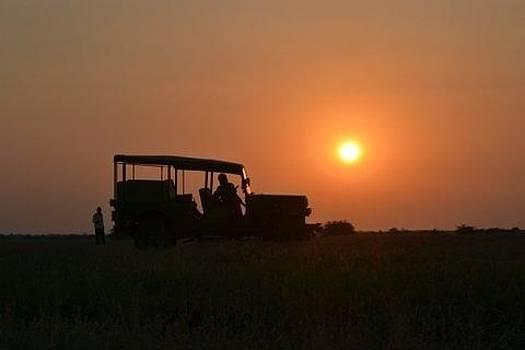 Sunset on the fields by Aditi Bhatt