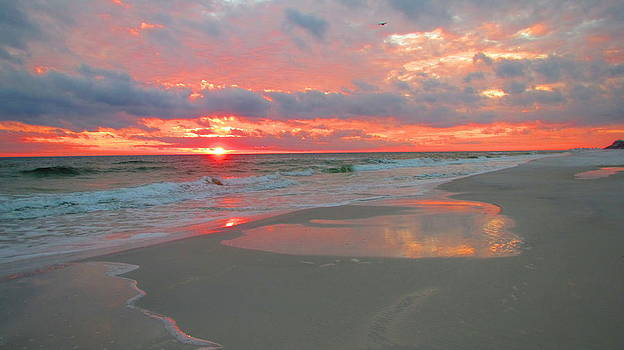 Sunset on the Gulf by Denise   Hoff