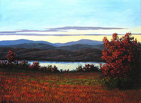 Sunset on the Hudson River NY by Patty Baker