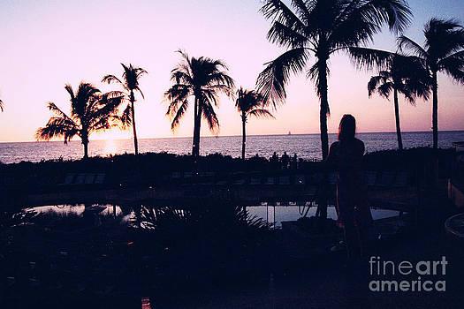 Sunset On The Island by Tina Hailey