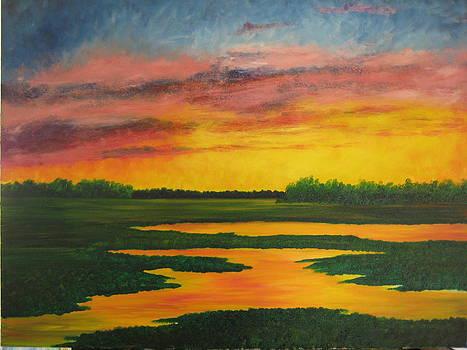 Sunset on the Marsh by Darla Brock