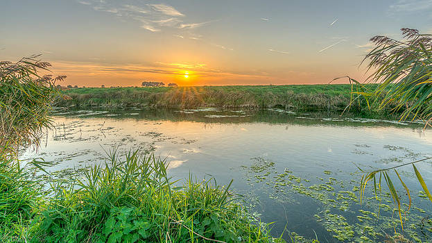 Sunset On The Marshes by David Attenborough