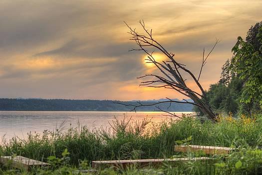 Sunset on the water by Richard Jones