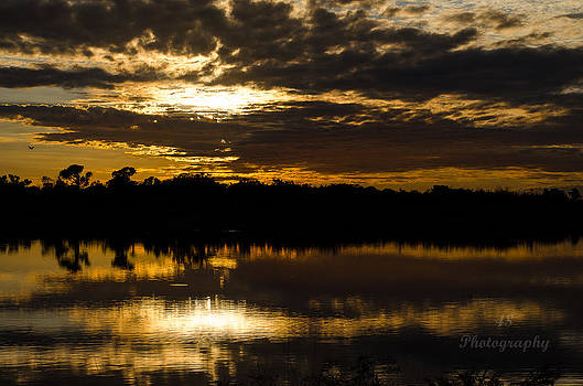 Sunset on the Wetlands by Brian Manley