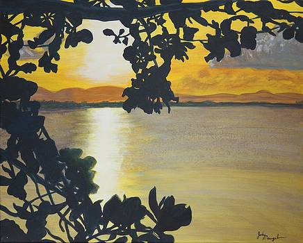 Sunset on Vieques by Jody Neugebauer