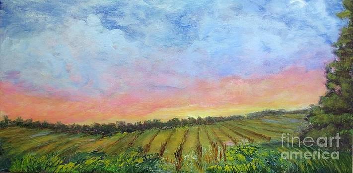 Sunset Over Corn Fields by Vivian Haberfeld