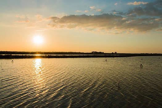Sunset Over Crawfish Pond 1 by Christen Weber