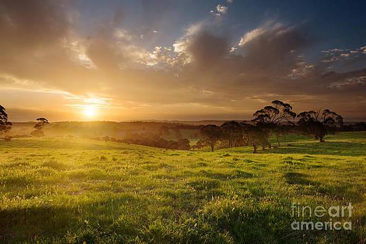 Sunset Over Farmland by Gillian Vann