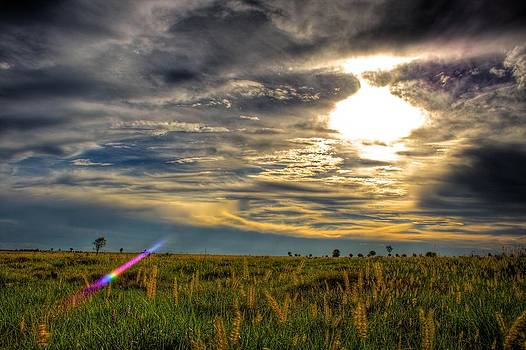 Sunset Over Field by Shane Dickeson