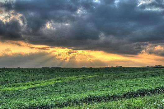 Sunset over the fields by Richard Jones