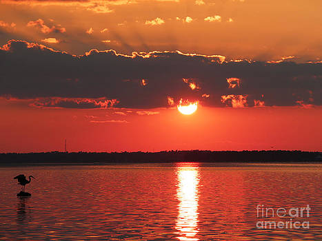 Sunset Over Water by Light Rapture