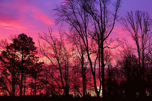 Sunset Paint by Rajkiran Ghanta