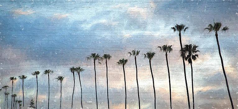Sunset Palms  by Eric  Bjerke Sr