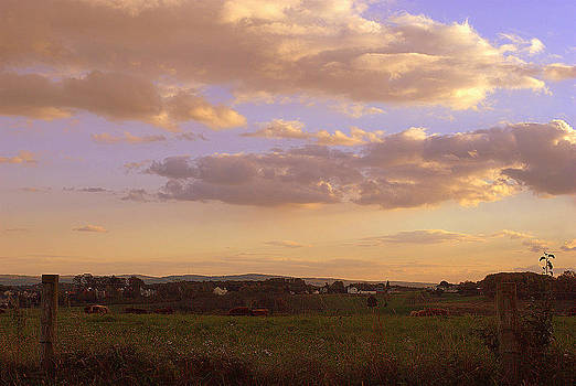 Sunset Pasture by M Hess