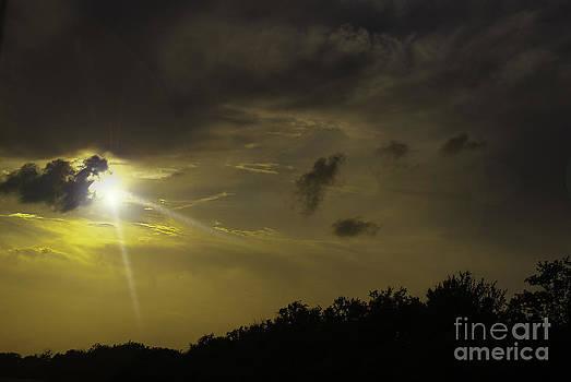 Judy Hall-Folde - Sunset Radiance