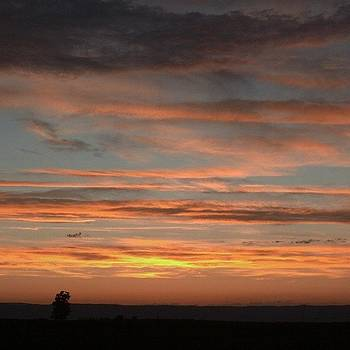 Sunset by Rebekah Martin