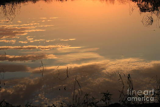 Sunset Reflection by Robert D  Brozek