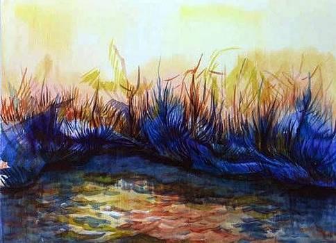 Anna  Duyunova - Sunset reflections