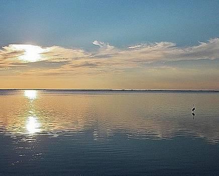 Sunset Reflections by Diana Berkofsky