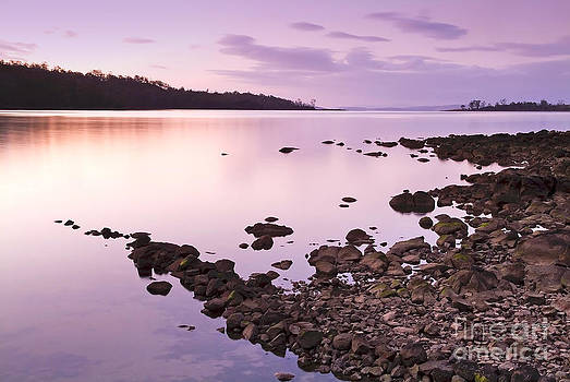 Tim Hester - Sunset Rocks