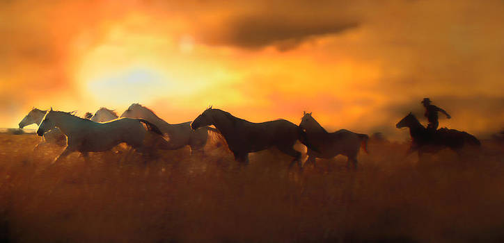 Sunset Round Up by Errol Wilson