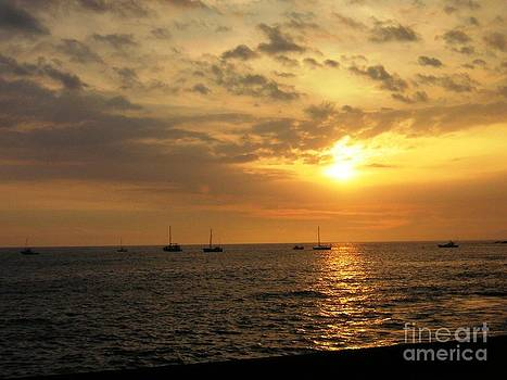 Sunset Sailing by Crystal Miller