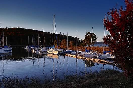 Sunset Setting at the Marina by Renee Hardison