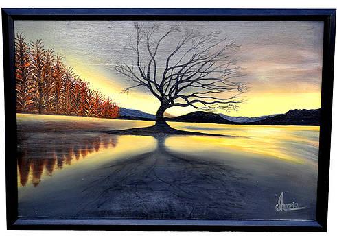 Sunset by Shazia Saeed