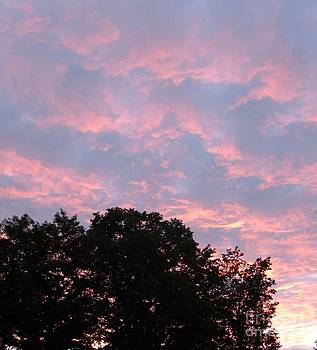 Gail Matthews - Sunset Silhouette