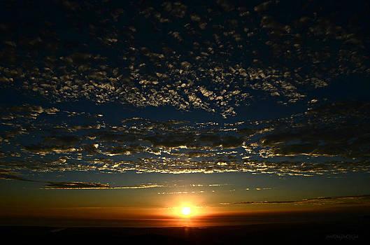 Sharon Tate Soberon - Sunset Silhouette
