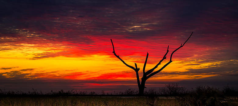Sunset Solitude by Mark Andrew Thomas