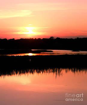DJ Laughlin - Sunset South Carolina Coastal Marshes marshes