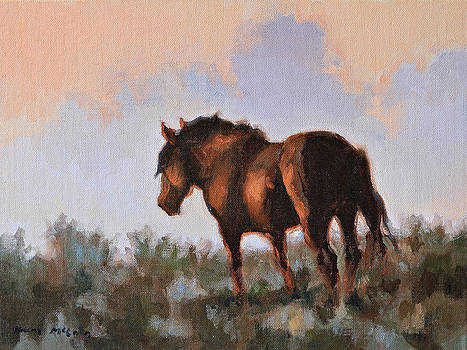 Sunset Stallion by Karen McLain