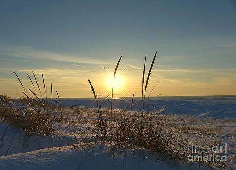 Sunset Star Winter Beauty Of Lake Michigan by Jack  Martin