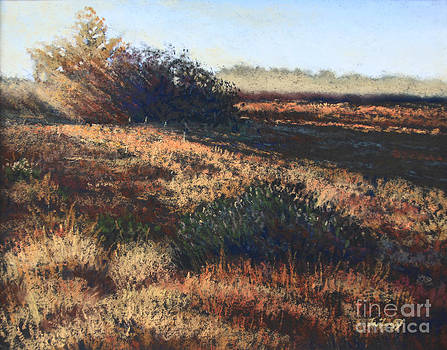 Sunset Study by Deb LaFogg-Docherty