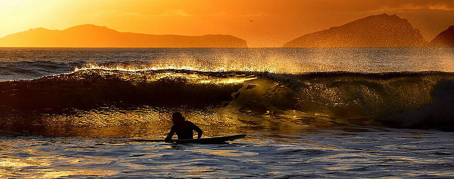 Sunset Surfer by Florian Walsh