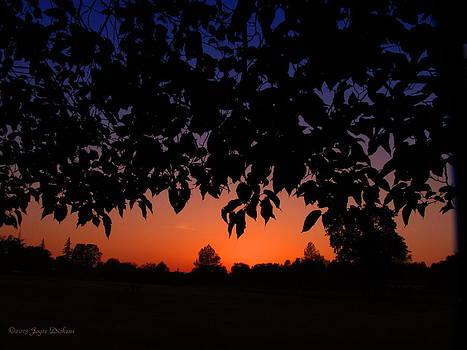 Joyce Dickens - Sunset Through The Trees