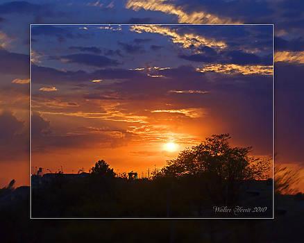 Walter Herrit - Sunset