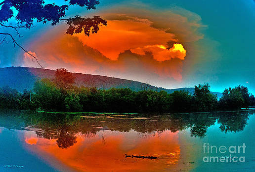 Sunset with Ducklings by Fred L Gardner