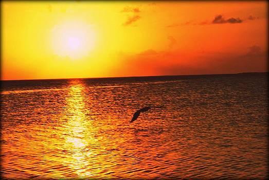 Sunset2 by Jose Mena