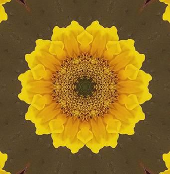 Sunshine Flower by Annette Allman